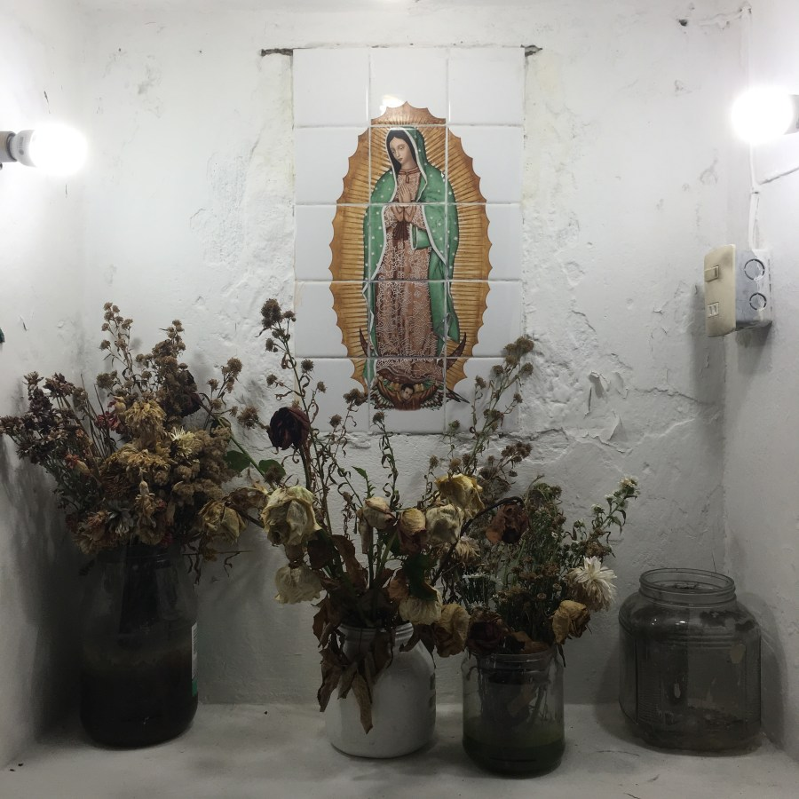 AP Crossover: Virgin of Guadalupe