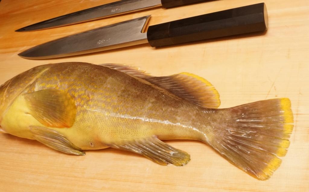 アオナは美味しい魚
