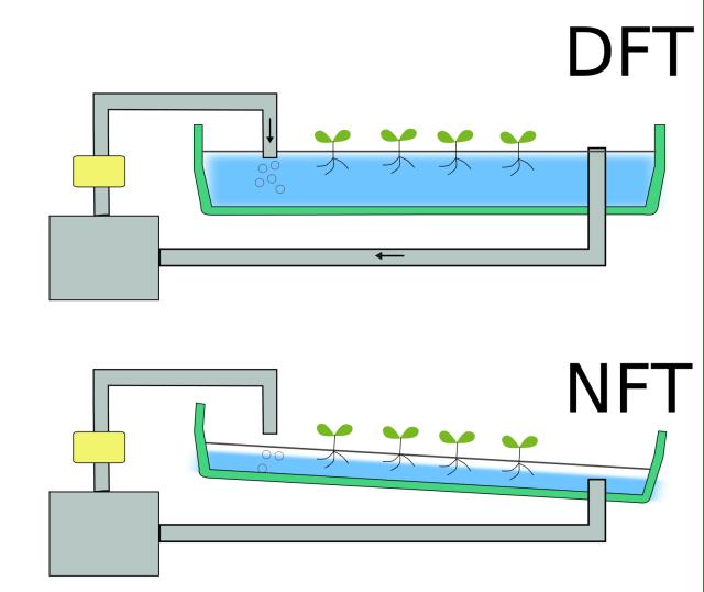 2つの代表的な水耕栽培方式 DFT/NFTとはどんなもの?