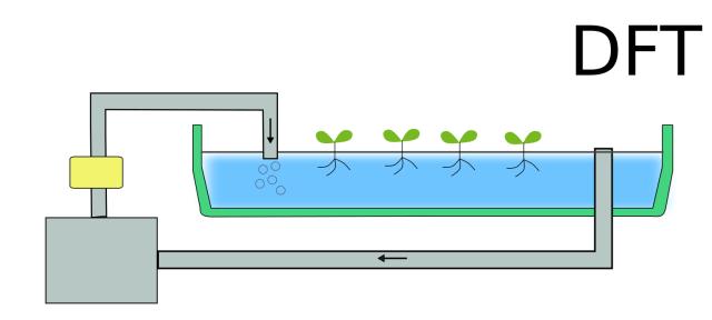 DFTの水耕栽培の様子を表した図