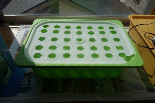 水耕栽培の容器に穴あけをした様子。