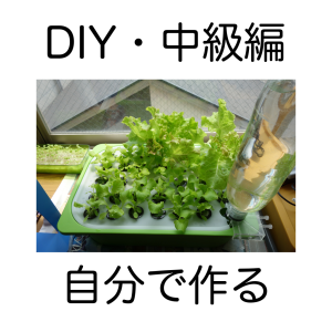 Hydroponics-DIY-Medidum Level