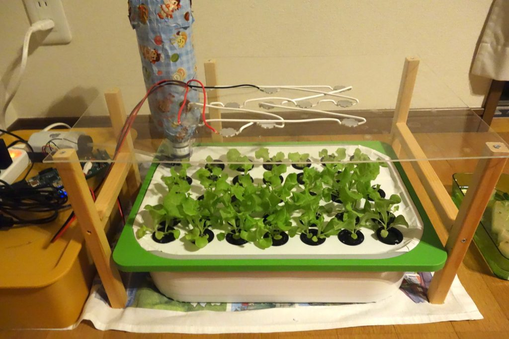 hydroponics system with LED light. To use sunlight at the same time, transparent material to get through the light is used. Both LED and Sunlight can be used