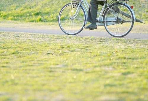家族を守る主婦必見!自転車保険選びで意識すべき4つのポイント