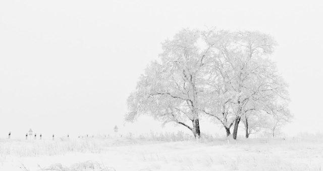 冬の寒さに負けたくない、定評のある防寒対策用ランニングウェア3選