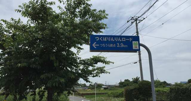 野田から筑波山へ 131kmライド