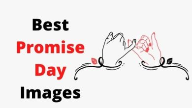 Photo of Best Happy Promise Day 2021 Images