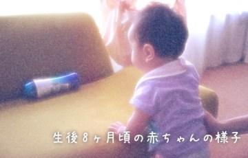 生後8ヶ月頃の赤ちゃんの様子