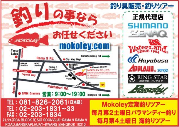 Mokoley(モコリー)の広告