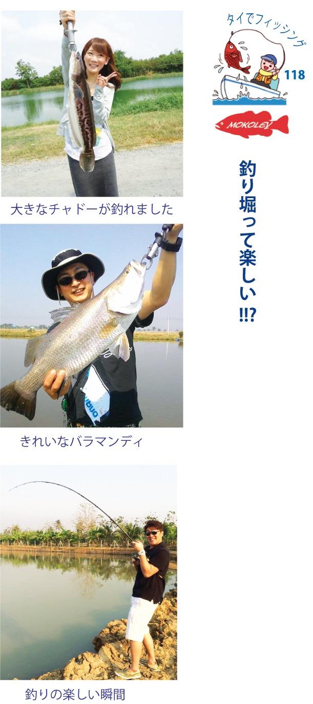 MOKOLEY(モコリー)のタイでフィッシング:釣り堀って楽しい !!