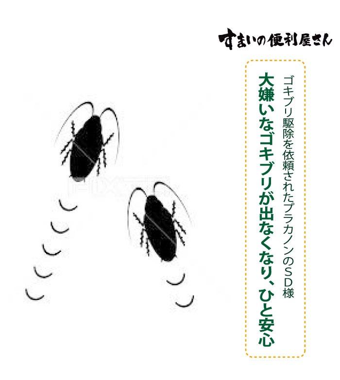大嫌いなゴキブリが出なくなり、ひと安心、ゴキブリ駆除を依頼されたプラカノンのSD様
