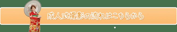 seijin_nagare