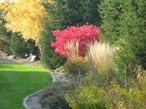 Beautiful plantings through the properties.