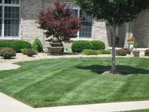 Hawthorne Hills Lake Subdivision front lawn