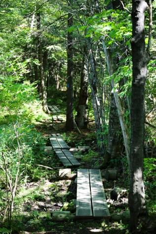 cazenovia-link-trail-boards-1