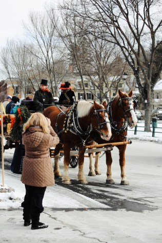 woodstock-wassail-weekend-horse-carriage-2