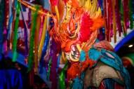 CarnavalesMadrid2016 (24)