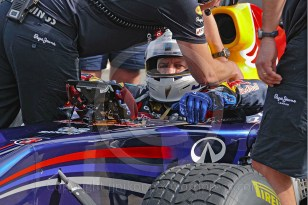 Red Bull Scheckter1239 WP copyright