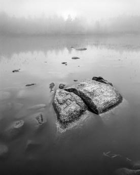 Lily Pond in Fog — White Mountains, NH © jj raia