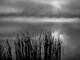 Foggy Sunrise — Wanaque Reservoir, NJ © jj raia