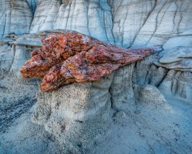 Fallen Petrified Log, Bisti Badlands, NM