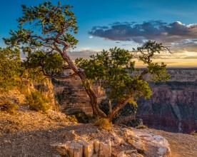 Mojave Point, Grand Canyon NP, AZ © jj raia