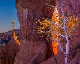 Window and Spire at Sunset —Bryce Canyon National Park, UT © jj raia