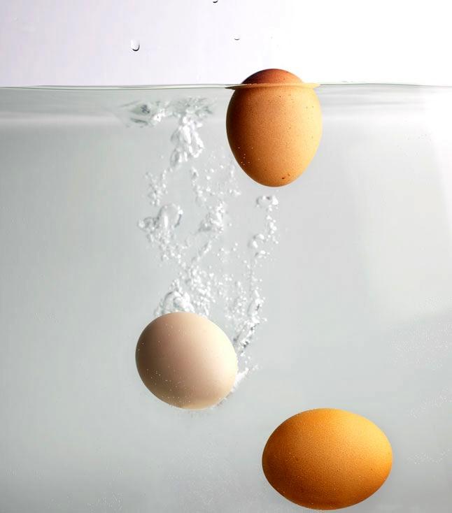 egg test