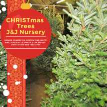 Christmas Trees & Nursery - Spring