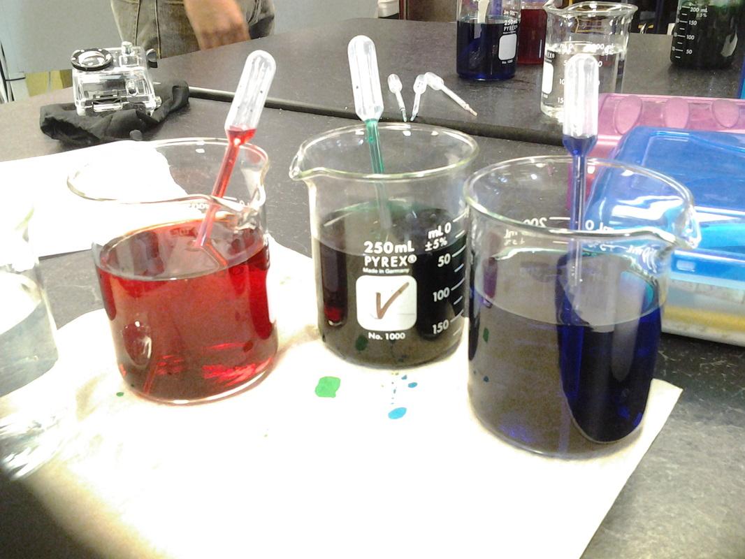 Water Density Salinity Lab