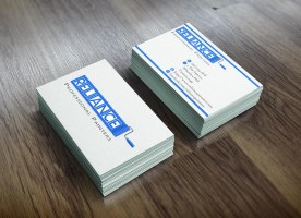 Reliance Painters - Business Card Mock-up