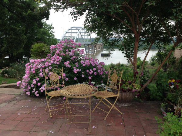 Brick lined court provides seating to overlook river. Caldwell Beauty in full bloom.