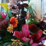 Flowers 002