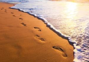 summer walk on beach