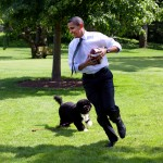 work like a dog Obama