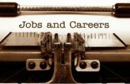 job vs. career