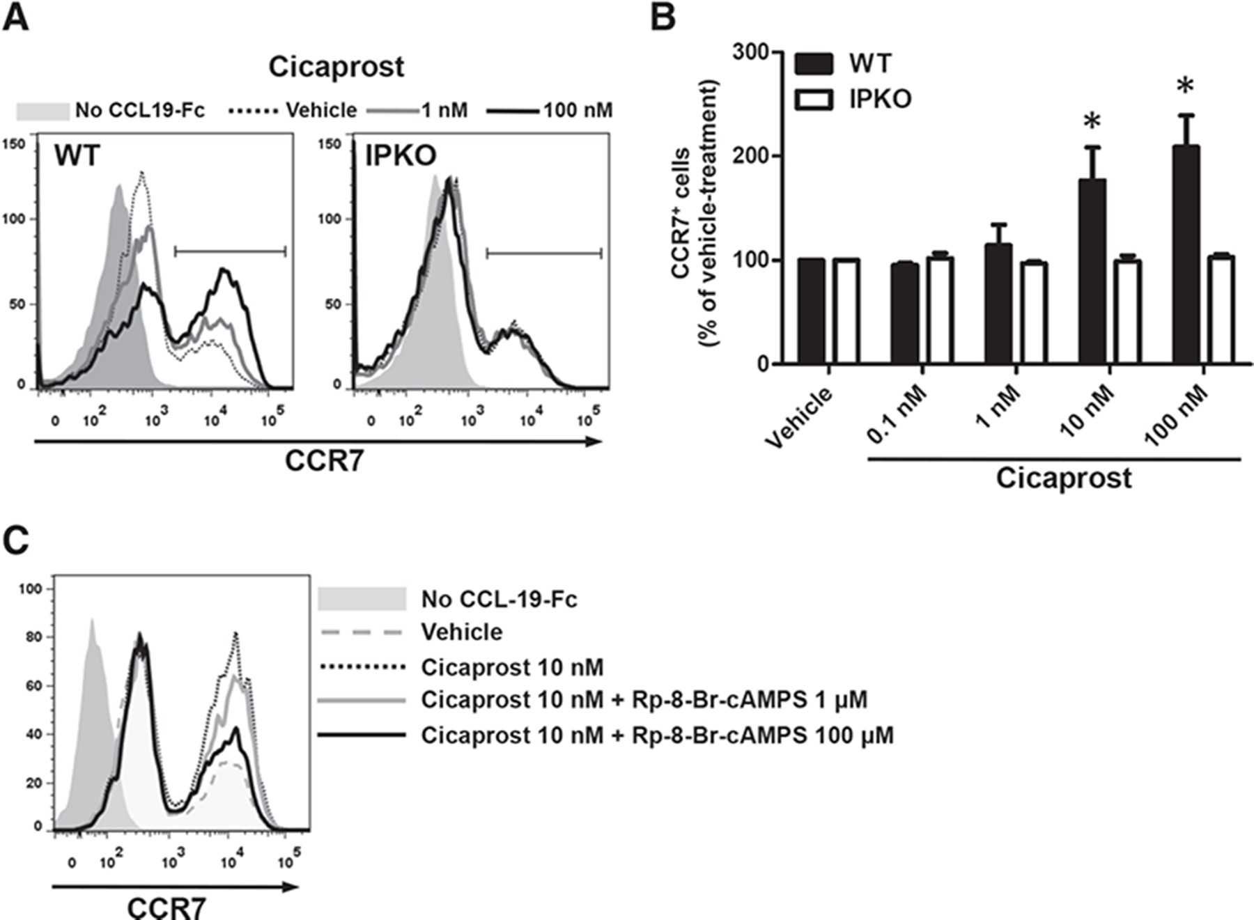 PGI2 signaling inhibits antigen uptake and increases