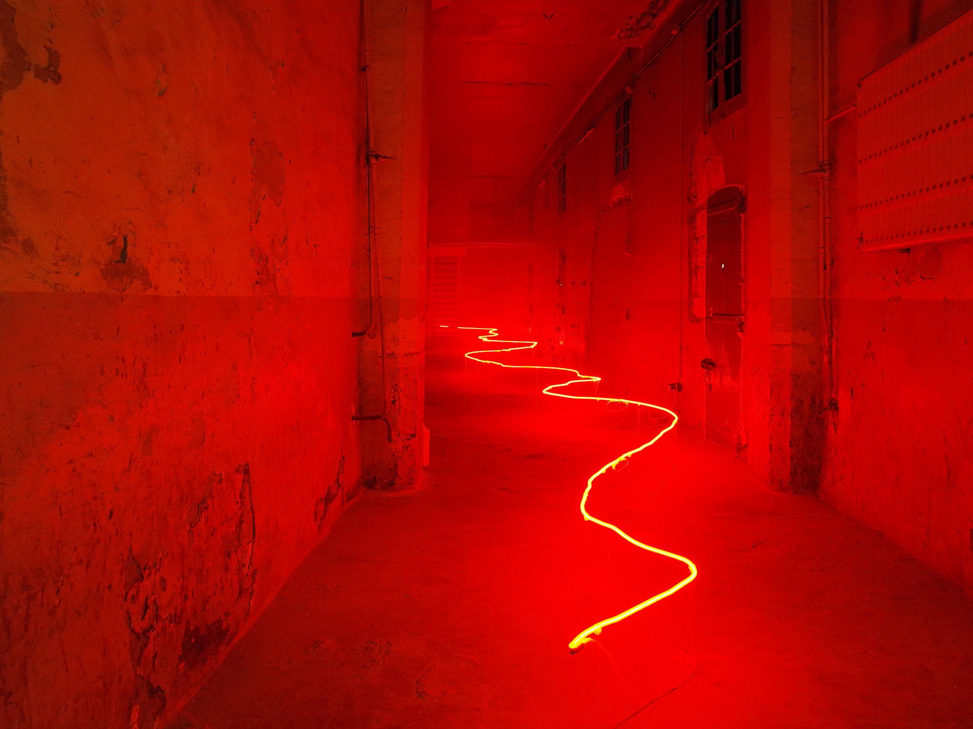 Neon Installation Art