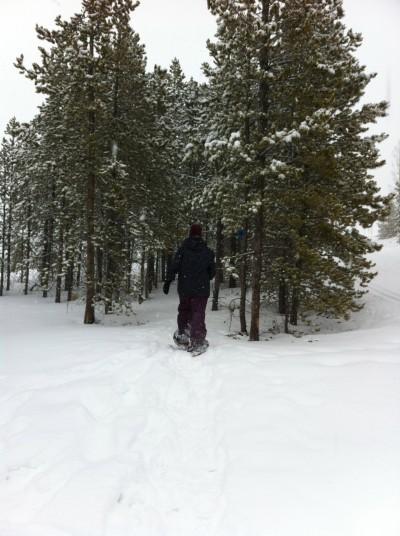 JL goes snowshoeing