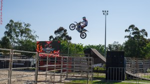 Bikes&Bulls take off