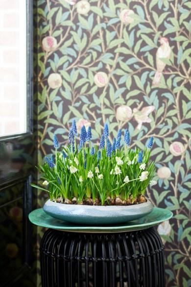 woonplanten van maart