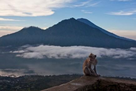 JLM Travel - Bali, slow travel - (c) Martin Garrido