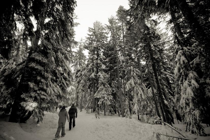 JLM Travel - aborder la neige autrement cet hiver