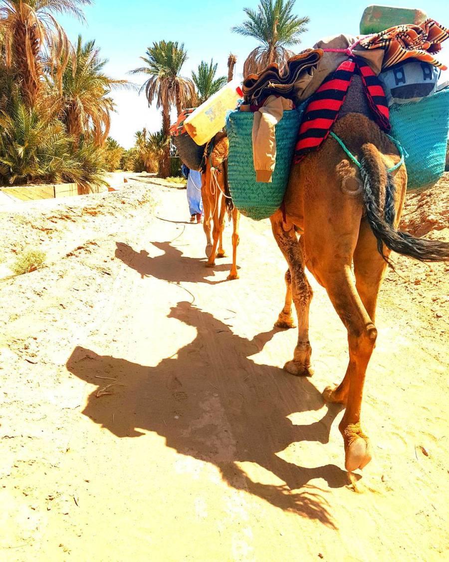 JLM Travel - Je voyage avec mes enfants