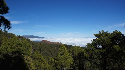 ~ cinder cone view ~