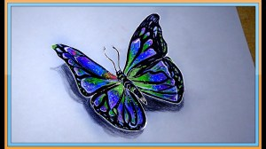 butterfly simple realism drawn drawing realistic draw pencil