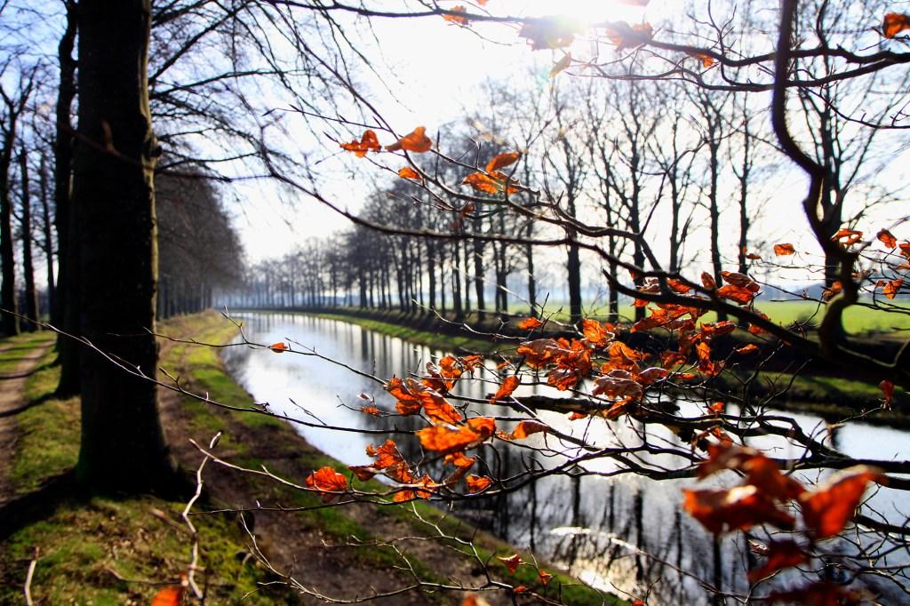 Wintertaferelen bij de Schipbeek