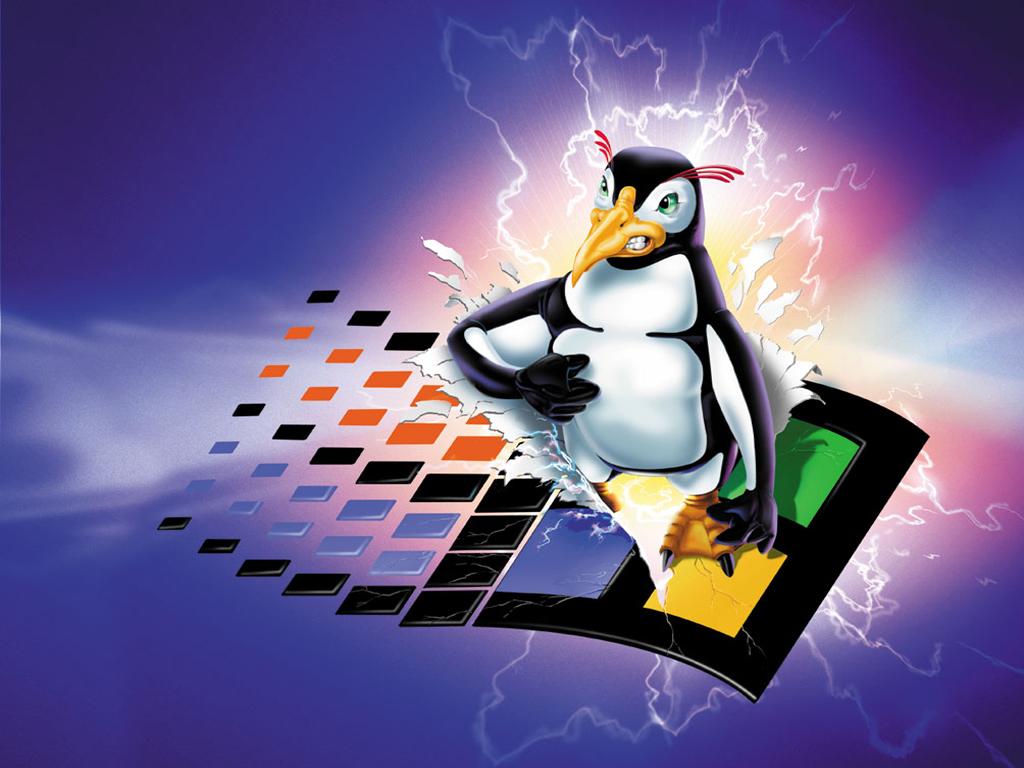 penguin-windows