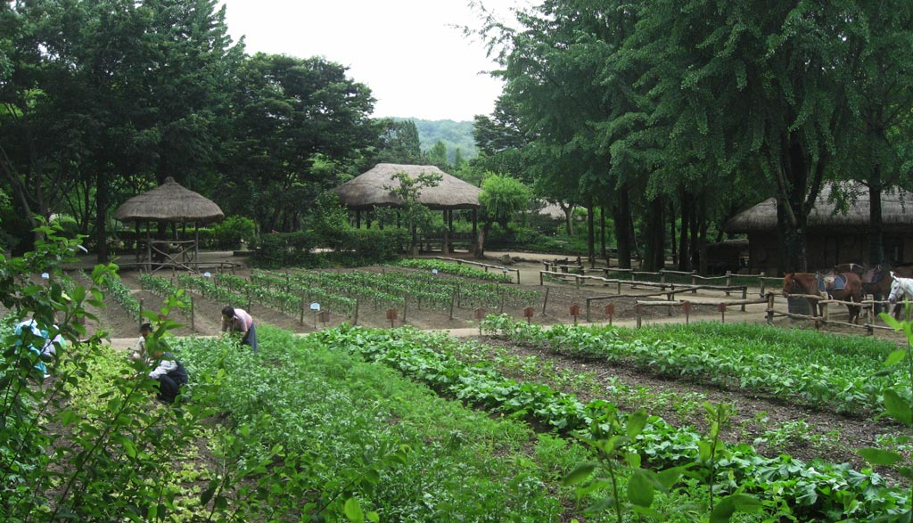 There were extensive areas of gardens still being worked. Throughout the village were people dressed in traditional costume demonstrating traditional crafts.