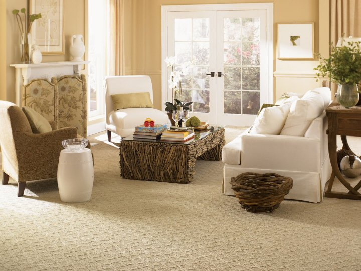 living room with carpet | Conceptstructuresllc.com